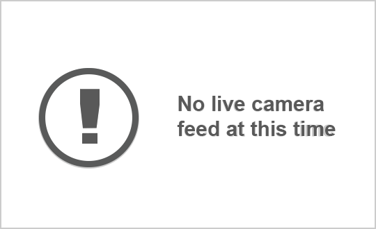Webcam of Highway 401 near Highway 427 South courtesy of the MTO